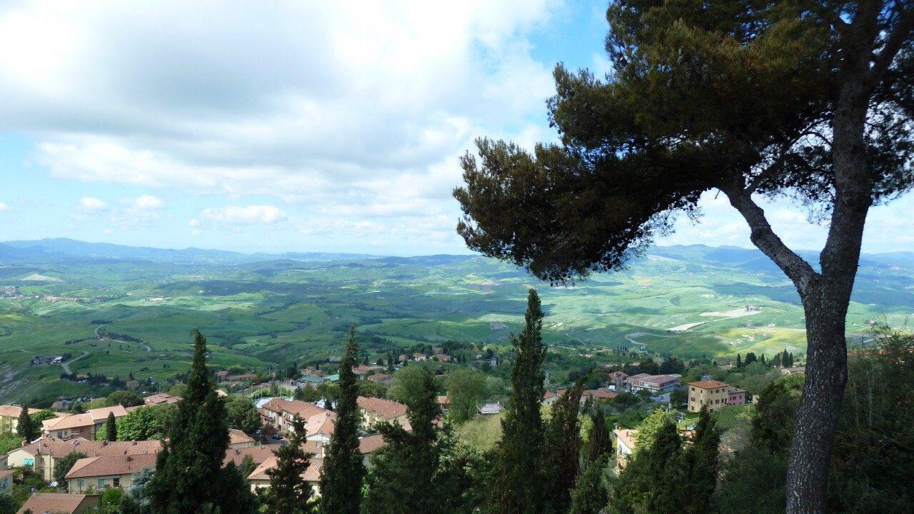Volterra2